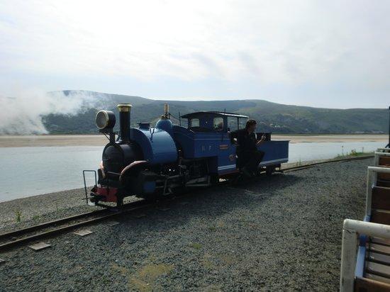 Lawrenny Lodge: train