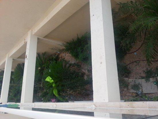 Mix Bahia Real: Vue depuis la chambre