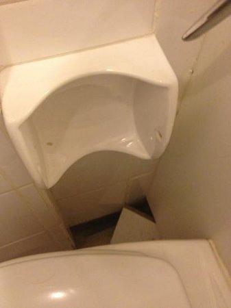 The Normanhurst Hotel and Restaurant: broken toilet roll holder and tile