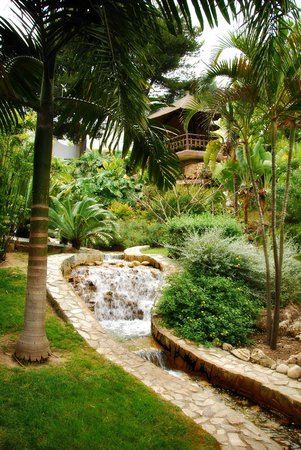 Jardin Botanico Molino de Inca: Inside