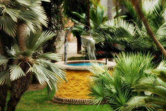 Jardin Botanico Molino de Inca: Well inside