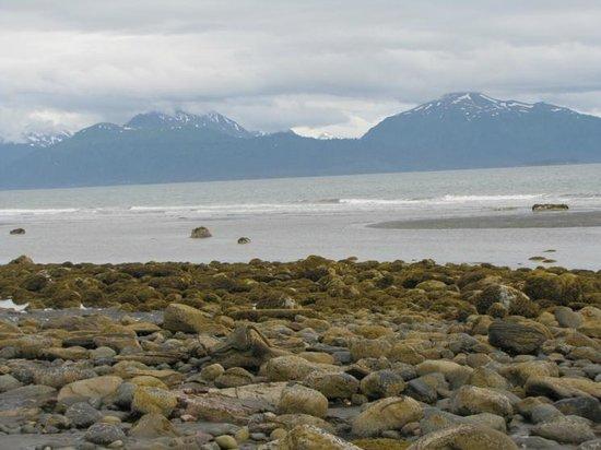 Homer Spit: The Kachemak Bay