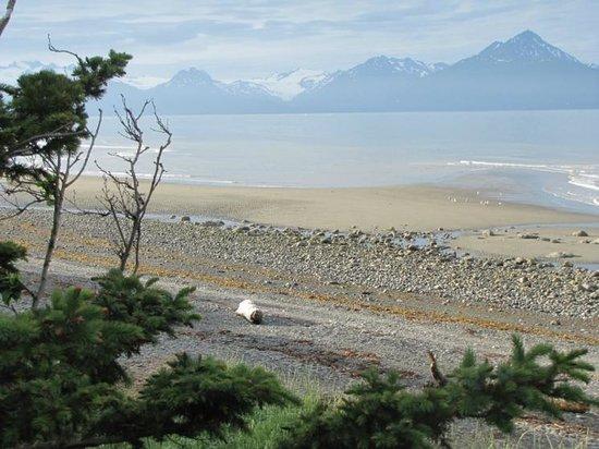 Homer Spit: Kachemak Bay beach