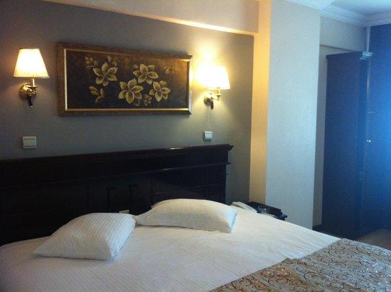 Laleli Gonen Hotel: Notre chambre