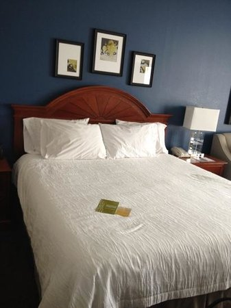 Hilton Garden Inn Westbury: king Bed