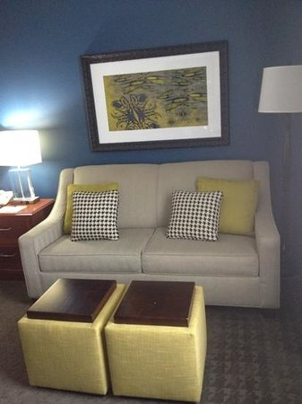 Hilton Garden Inn Westbury: Sofa Bed In King Room