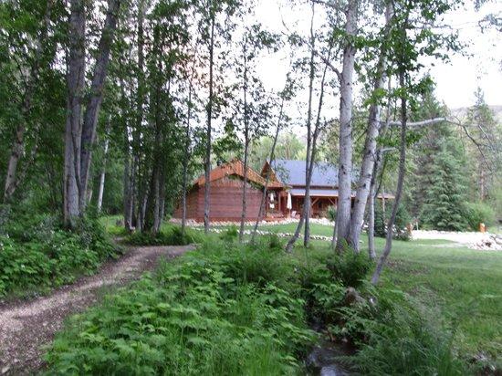 Moul Creek Lodge B & B: Die Lodge und der Garten