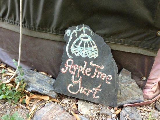Yurt Holiday Portugal: The Apple Tree Yurt 3