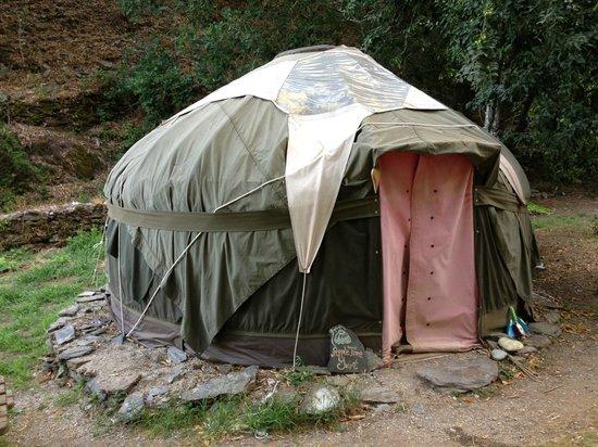 Yurt Holiday Portugal: The Apple Tree Yurt 4