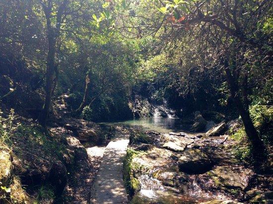 Yurt Holiday Portugal: Wild Swimming
