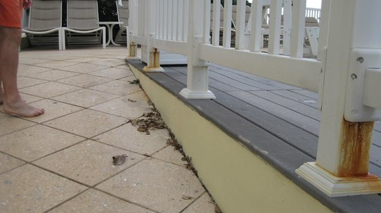 Pelican Grand Beach Resort, A Noble House Resort: rust everywhere