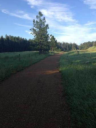 Black Hills Cabins and Motel at Quail's Crossing: Mickelson Trail directly behind the property