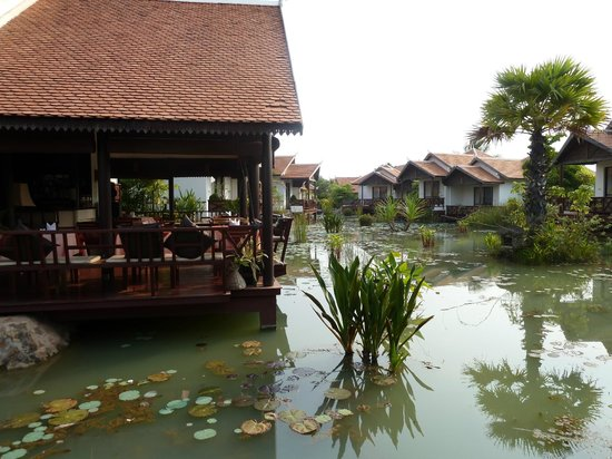 BEST WESTERN Suites and Sweet Resort Angkor : VUE DE LA TERRASSE