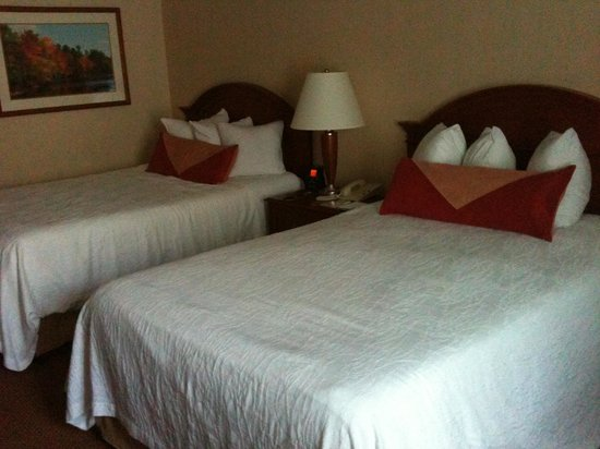 Hilton Garden Inn Sacramento/South Natomas: 2 double beds