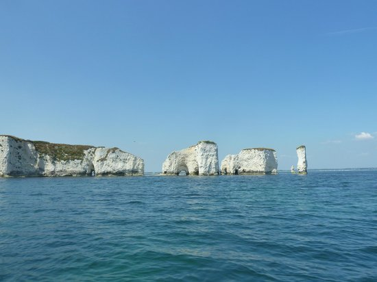 Poole Sea Safari: View of Old Harry from the rib