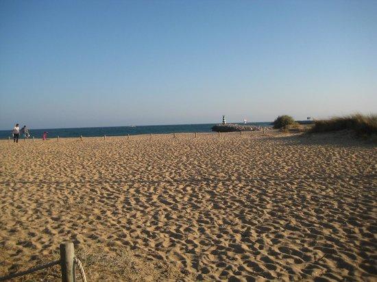 Marina de Vilamoura : beach