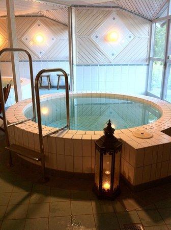FågelbroHus Hotel: Realxen med avkylningsbassänger