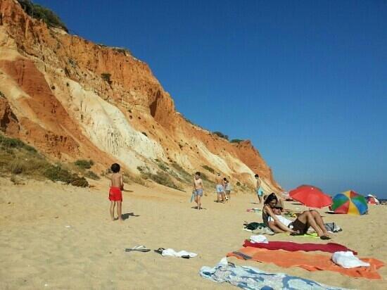 Falesia  Beach: falesia