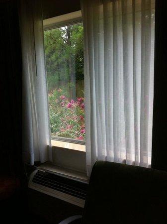 Fairfield Inn Tuscaloosa: The View