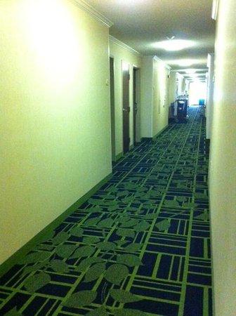 Fairfield Inn Tuscaloosa: The Hallway