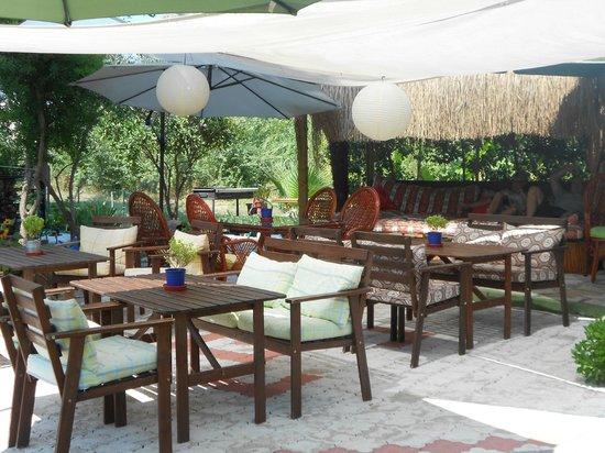 Kilim Hotel: Cafe