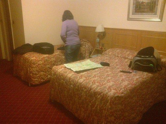Viking Hotel: Habitación triple
