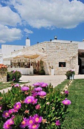 Villa Cridelli