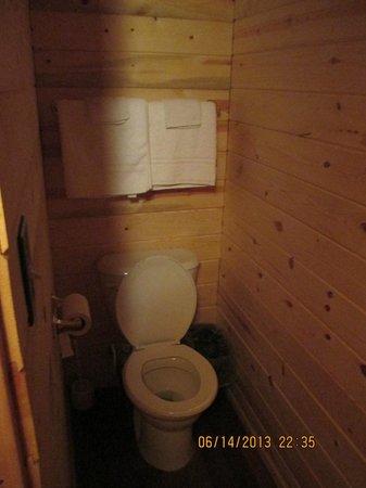 Shady Rest Motel: toilet