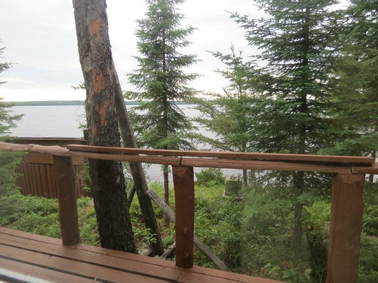 Loch Island Lodge : View from the deck
