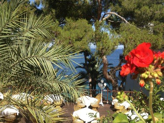 Roc Illetas: lovely terrace to eat on...