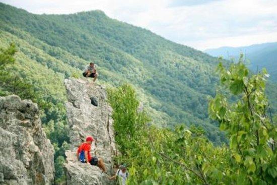 Yokum's Seneca Rocks Stables: A View From Seneca Rocks