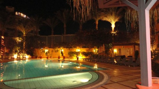 Sea Garden Hotel : pool area