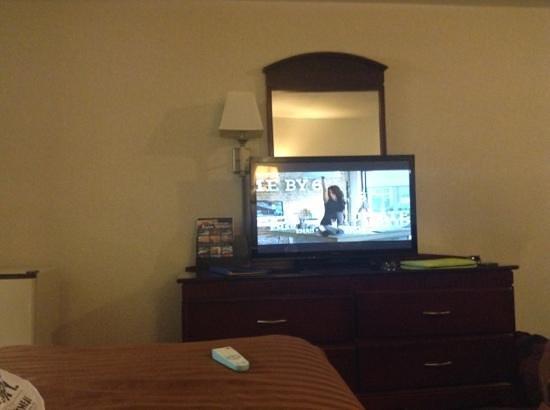 BEST WESTERN Pasadena Royale : TV furniture