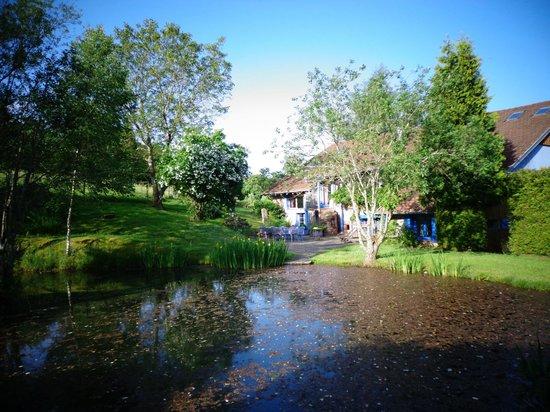 La Ferme de Marion : La maison vue de l'étang