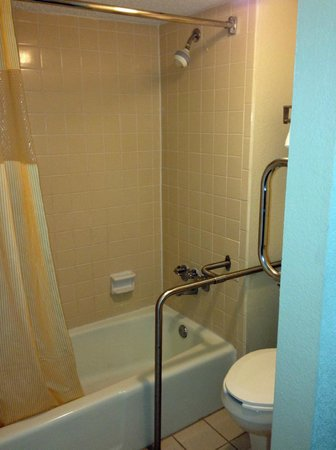 Days Inn Asheville West: bathroom - handicapped room