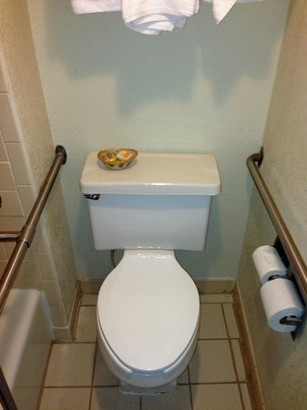 Days Inn Asheville West: toilet - handicapped room