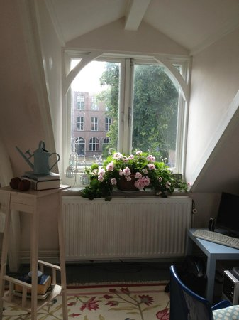 Salomon's Room: Begonias and a large window