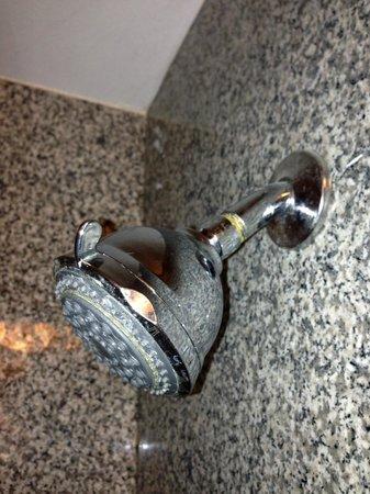 La Quinta Inn & Suites Kingsland/Kings Bay Naval B: shower head