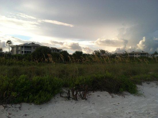 Shell Island Beach Club: View from the beach