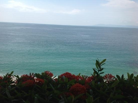 Park Royal Puerto Vallarta: desde el lobby.