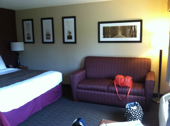 AmericInn Hotel & Suites Duluth South — Black Woods Convention Center : Sofa bed/couch