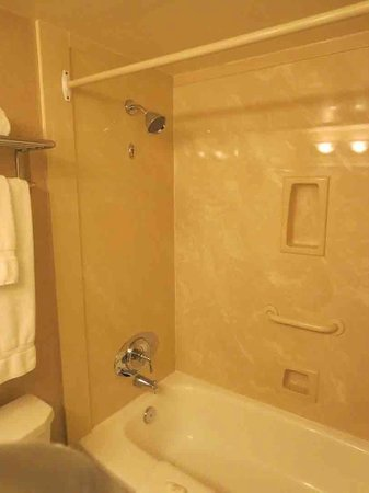 Chateau Victoria Hotel and Suites: Shower