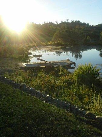 Eden Vale Inn: Sunset by the pond