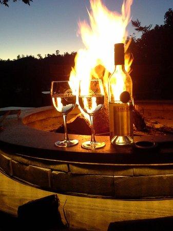 Eden Vale Inn : Fire and wine!