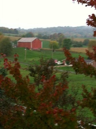 The Inn at Amish Door: Countryside behind the Inn.  This is the only barn in sight.  Mostly rolling hills.  Gorgeous!