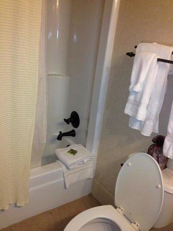 Ridges Resort & Marina: bathroom