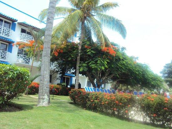 Hotel Playa Blanca Beach Resort: Zonas Verdes