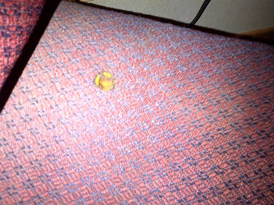 Canal Inn : Cigarette burn in cushion of desk chair