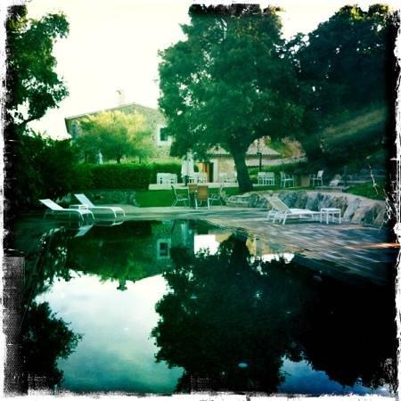Agroturisme Son Simo Vell: pool area