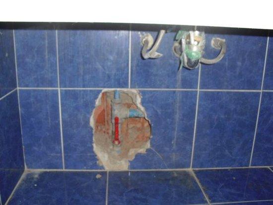 Hotel Colibri: baño